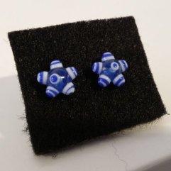 20160129_145752_Fleurs bleues